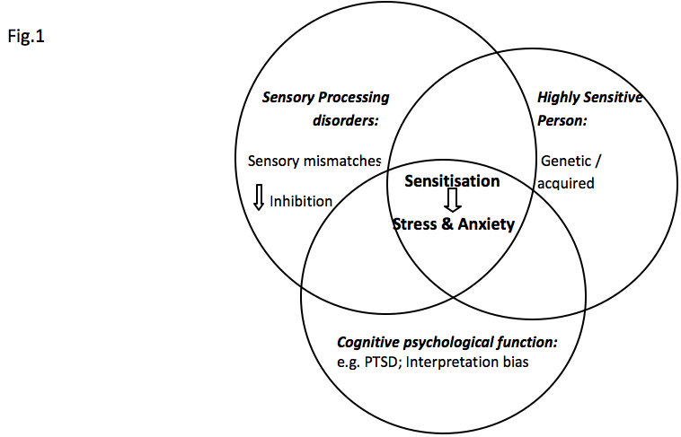 Anxiety problems relating to sensory processing ...